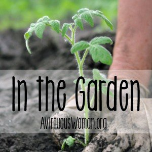 In the Garden @ AVirtuousWoman.org #proverbs31