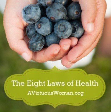 The Eight Laws of Health on A Virtuous Woman | The Proverbs 31 Woman