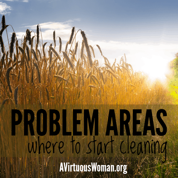 Problem Areas {Where to Start Cleaning} @ AVirtuousWoman.org