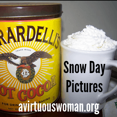 A Snow Day in Pictures @ AVirtuousWoman.org