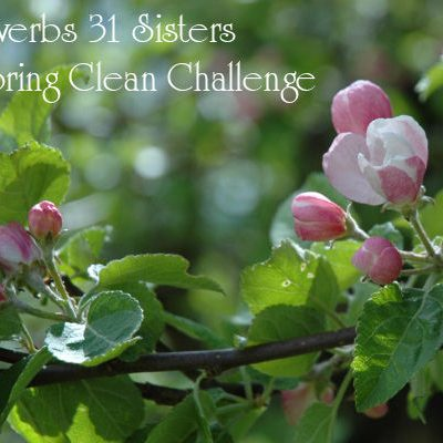 4th Annual Spring Clean Challenge