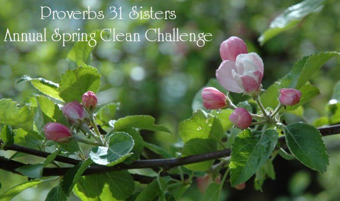 Spring Cleaning for the Heart and Home