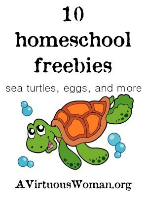 Sea Turtles, Eggs, and More {Freebies}