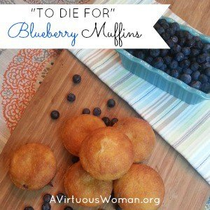 """To Die For"" Blueberry Muffins"