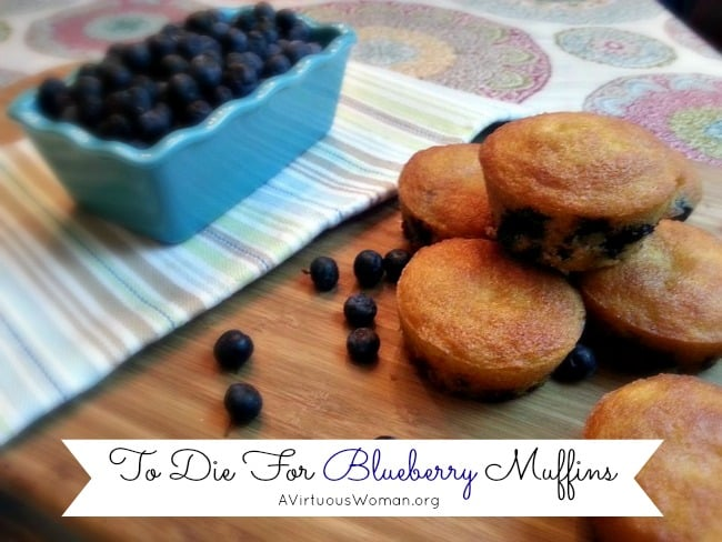 """To Die For"" Blueberry Muffins @ AVirtuousWoman.org"