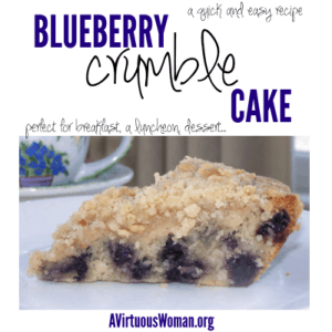 Blueberry Crumble Cake Recipe @ AVirtuousWoman.org