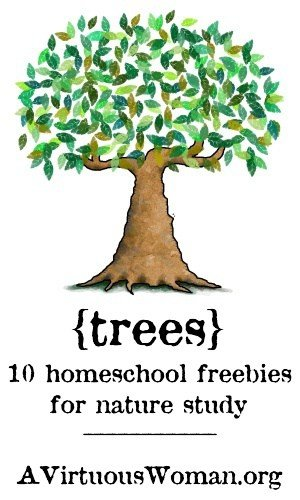 10 Homeschool Freebies for Nature Study {Trees}  | A Virtuous Woman