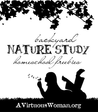 Backyard Nature Study {Homeschool Freebies}