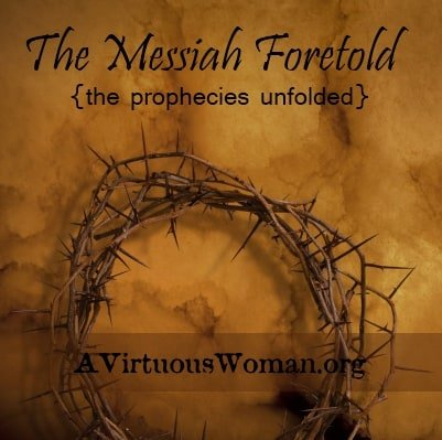 The Messiah Foretold {the prophecies unfolded}   A Virtuous Woman