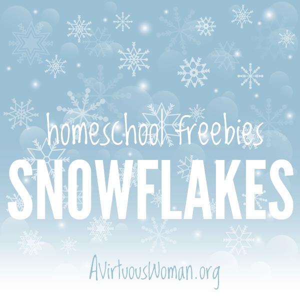 Homeschool Flakes: Snowflakes @ AVirtuousWoman.org