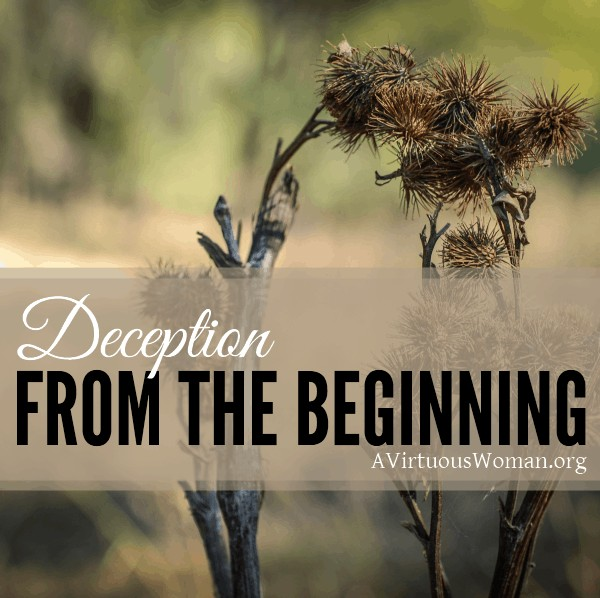 Deception from the Beginning @ AVirtuousWoman.org ---- What if what you've always believed to be true wasn't really true?