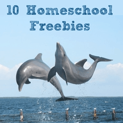 Homeschool Freebies: Dolpins @ AVirtuousWoman.org
