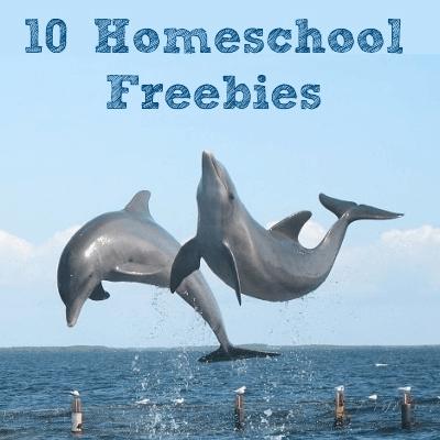 Homeschool Freebies: Dolpins @ AVirtuousWoman.org