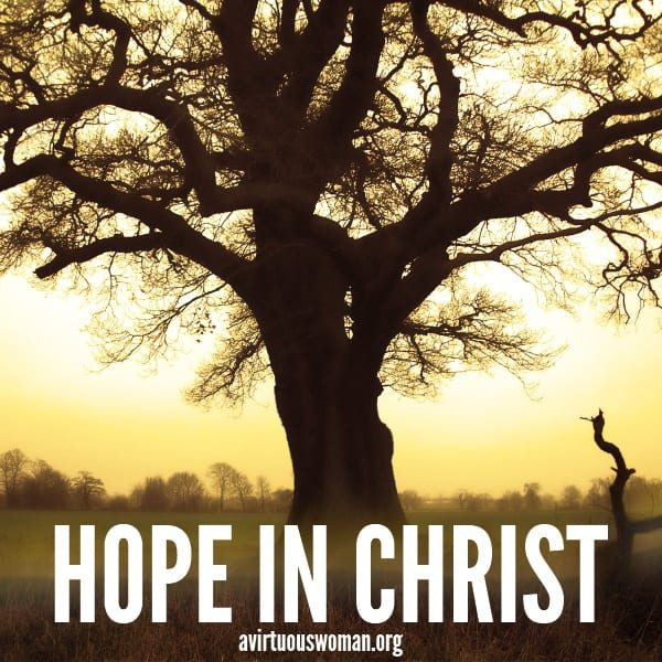 Hope in Christ: Part One @ AVirtuousWoman.org