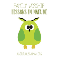 Lessons in Nature