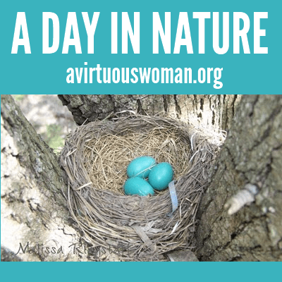 A Day in Nature @ AVirtuousWoman.org