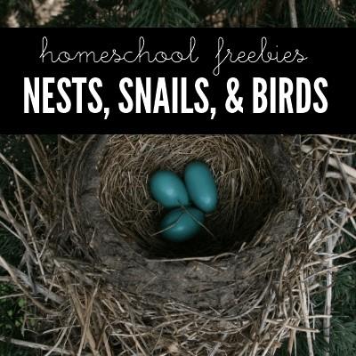 Homeschool Freebies: Nests, Snails, & Birds @ AVirtuousWoman.org #naturestudy