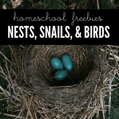Homeschool Freebies: Nests, Snails, & Birds @ AVirtuousWoman.org #naturestudy