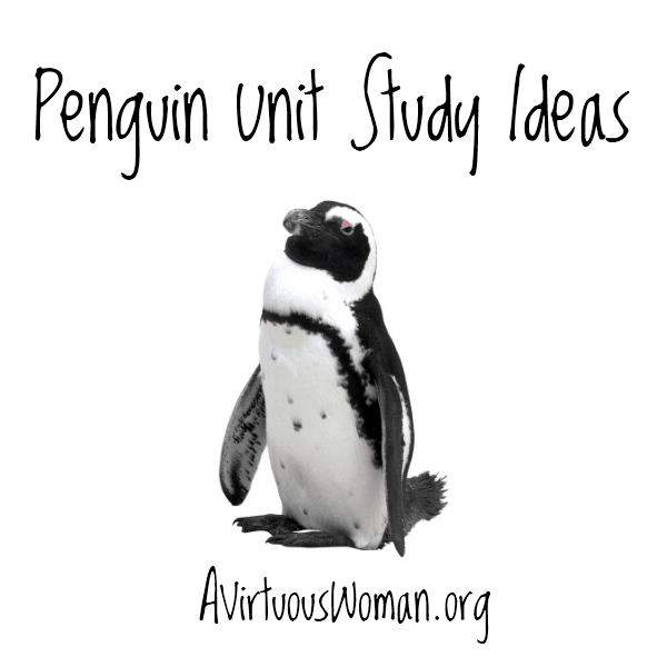 Penguin Unit Study Ideas @ AVirtuousWoman.org