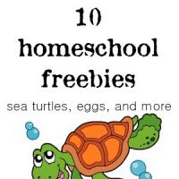 10 Homeschool Freebies: Sea Turtles, Eggs, and More @ AVirtuousWoman.org