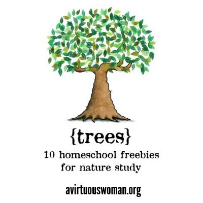 Homeschool Freebies: Trees @ AVirtuousWoman.org #naturestudy