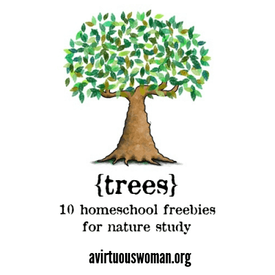 Homeschool Freebies: Trees @ AVirtuousWoman.org #naturestudy