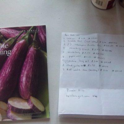 My Garden Plans 2012
