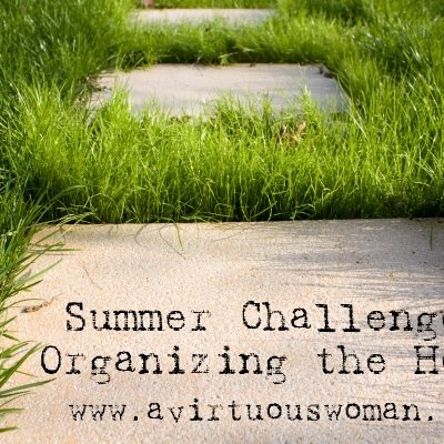 Summer 2012 Challenge: Organizing the Home