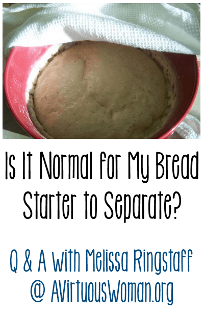 Is It Normal for My Bread Starter to Separate? Q & A @ AVirtuousWoman.org