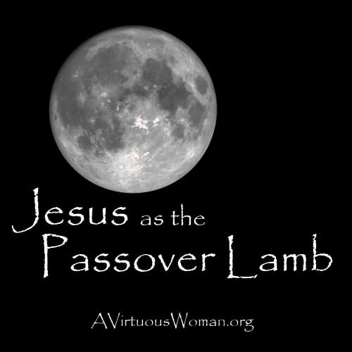 Jesus as the Passover Lamb {Prophecies} | A Virtuous Woman #biblestudy