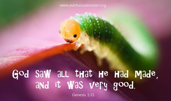 God saw all that he had made and it was very good. - AVirtuousWoman.org