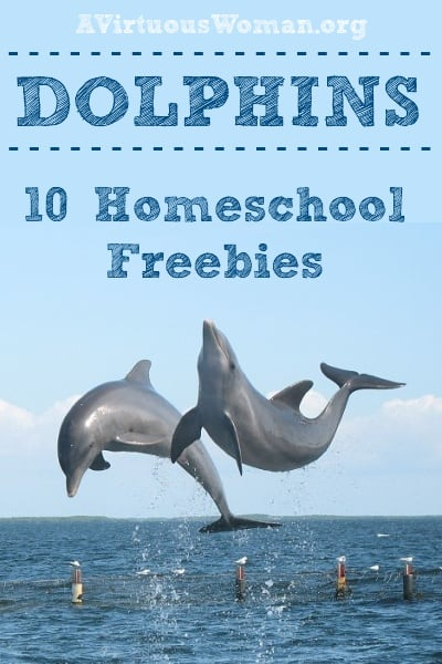 10 Homeschool Freebies {Dolphins} | A Virtuous Woman #homeschool #freebies
