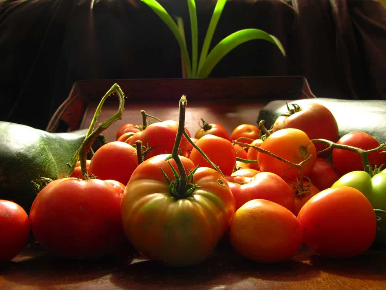 {How To} Canning Stewed Tomatoes @ AVirtuousWoman.org