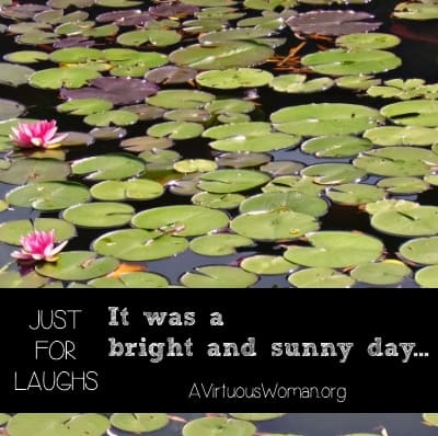 {Just for Laughs} It was a bright and sunny day... | A Virtuous Woman
