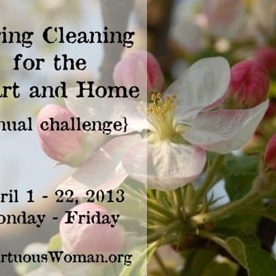 {5th Annual} Spring Clean Challenge