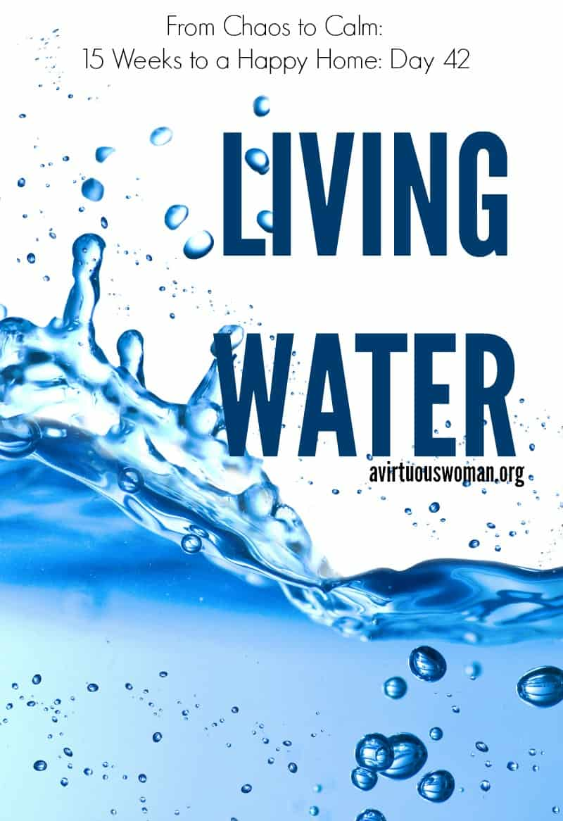 Living Water @ AVirtuousWoman.org