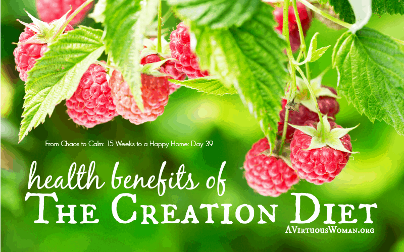 The Creation Diet {Day 39}