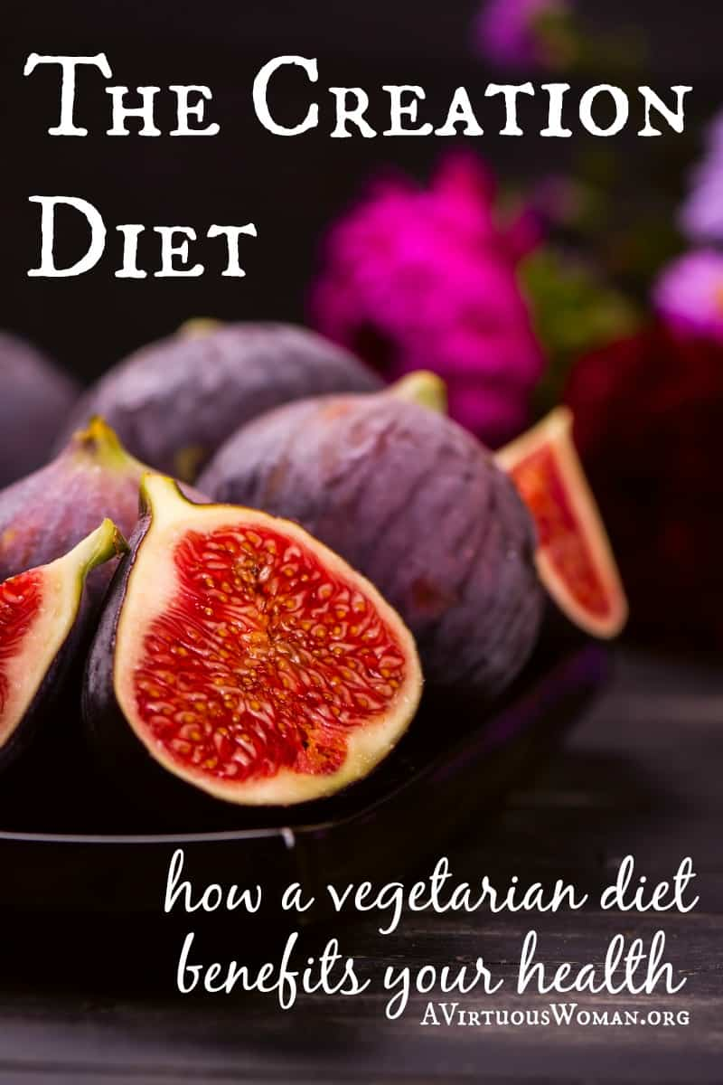 The Creation Diet @ AVirtuousWoman.org