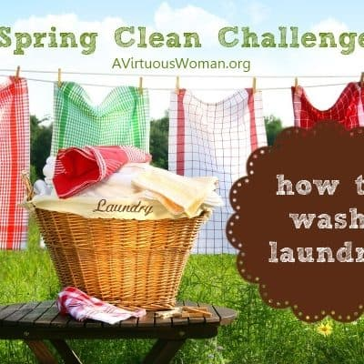 Spring Clean Challenge {Day 10}