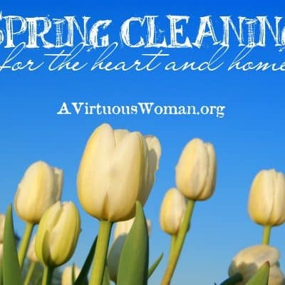 Spring Clean Challenge {Day 8}