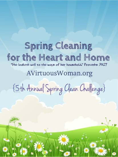 Spring Clean Challenge {Day 9}