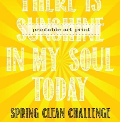 Spring Clean Challenge {Day 6}