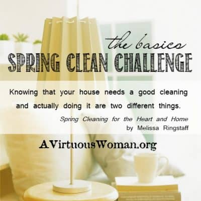 Spring Clean Challenge {Day 7}