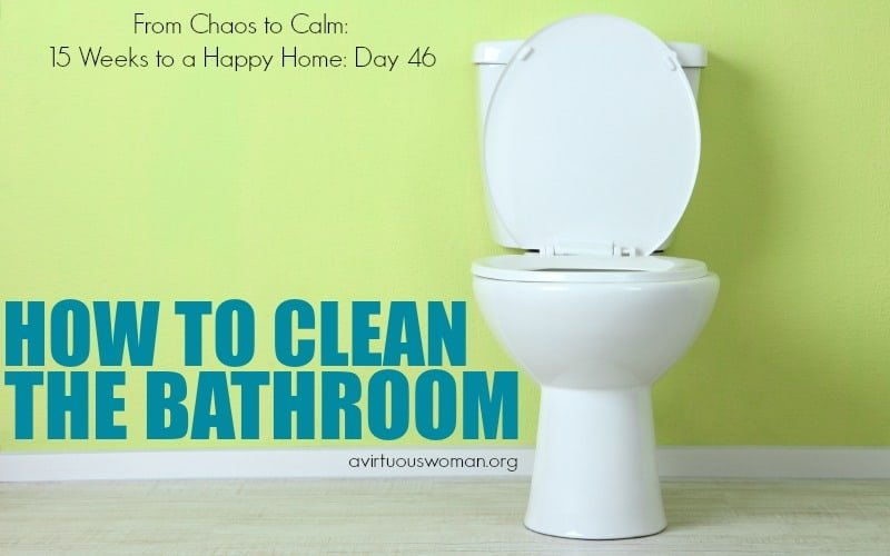 Cleaning the Bathroom {Day 46}
