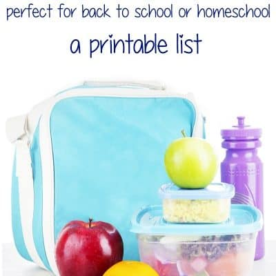 125+ Healthy Lunch Box Ideas {Printable List}