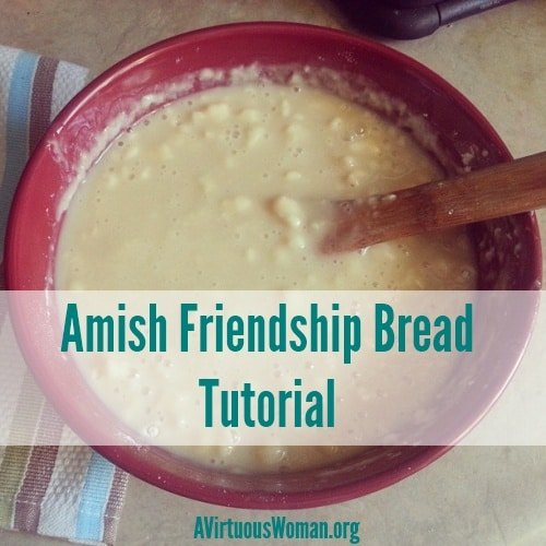 Amish Friendship Bread Tutorial | A Virtuous Woman