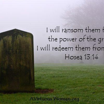 {Rest} Hosea 13:14