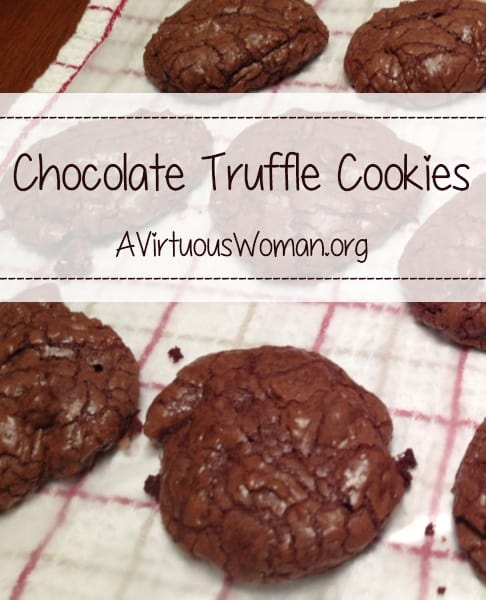 Chocolate Truffle Cookies - so rich and decadent! @ AVirtuousWoman.org