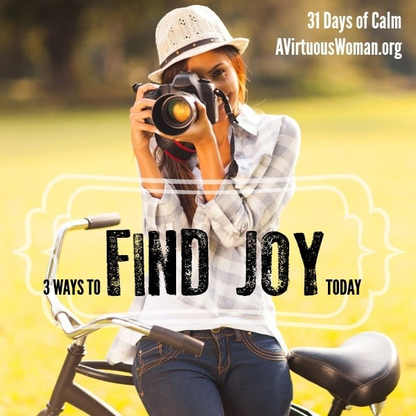3 Ways to Find JOY today. {31 Days to Calm Series} @ AVirtuousWoman.org