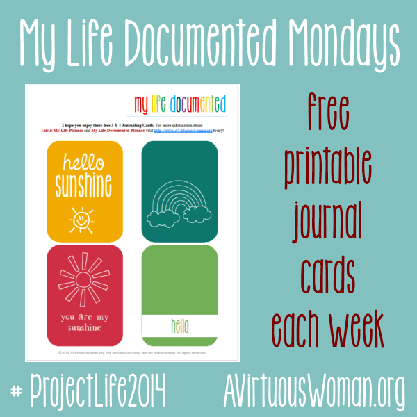 My Life Documented Mondays {Project Life 2014} @ AVirtuousWoman.org #ProjectLife